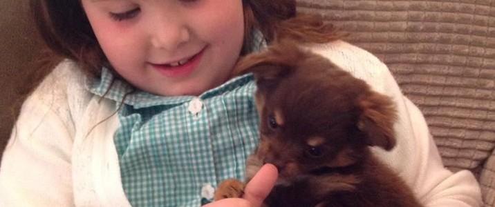 Az egész világ a beteg kislány kutyusát keresi