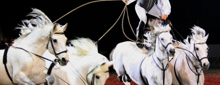 Lorenzo és lovai ismét elkápráztatnak