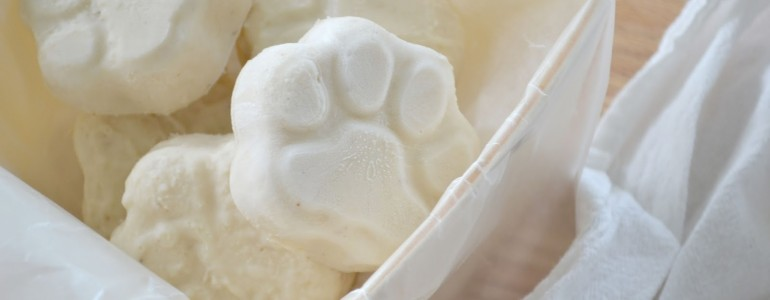 Kutyafagyi? – 3 recept, amit kedvenced imádni fog!