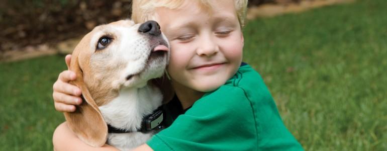 9 bizonyíték, hogy kutyát kapni a legnagyobb ajándék
