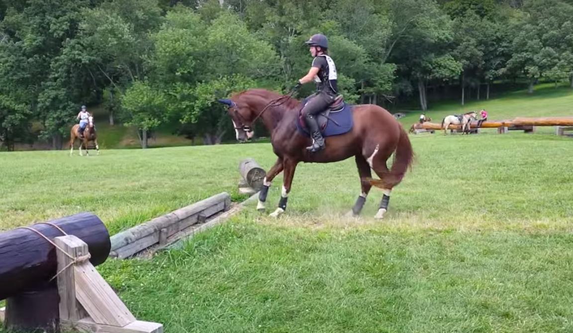 Ez a bizonytalan ló tuti, hogy megmosolyogtat