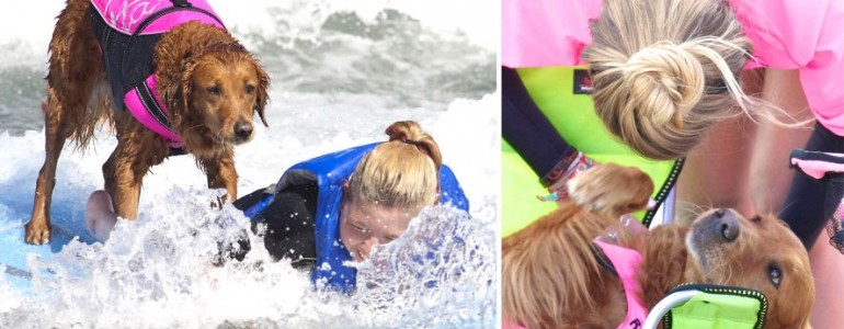 Gyógyíthatatlan betegségben szenvedő lányok életét teszi boldogabbá a szörföző kutyus