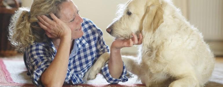 Ázsia lehet a válasz a kutyák múltjának kérdésére