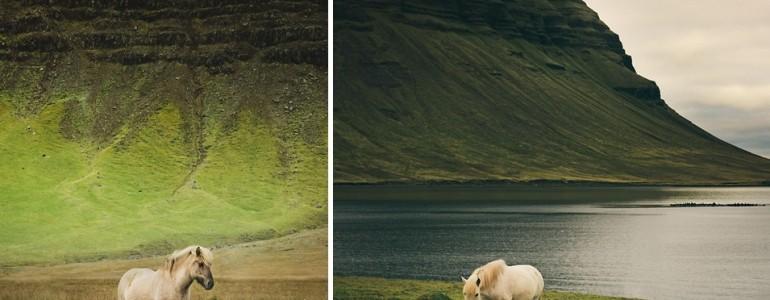 Lebilincselő fotók Izland vadlovairól