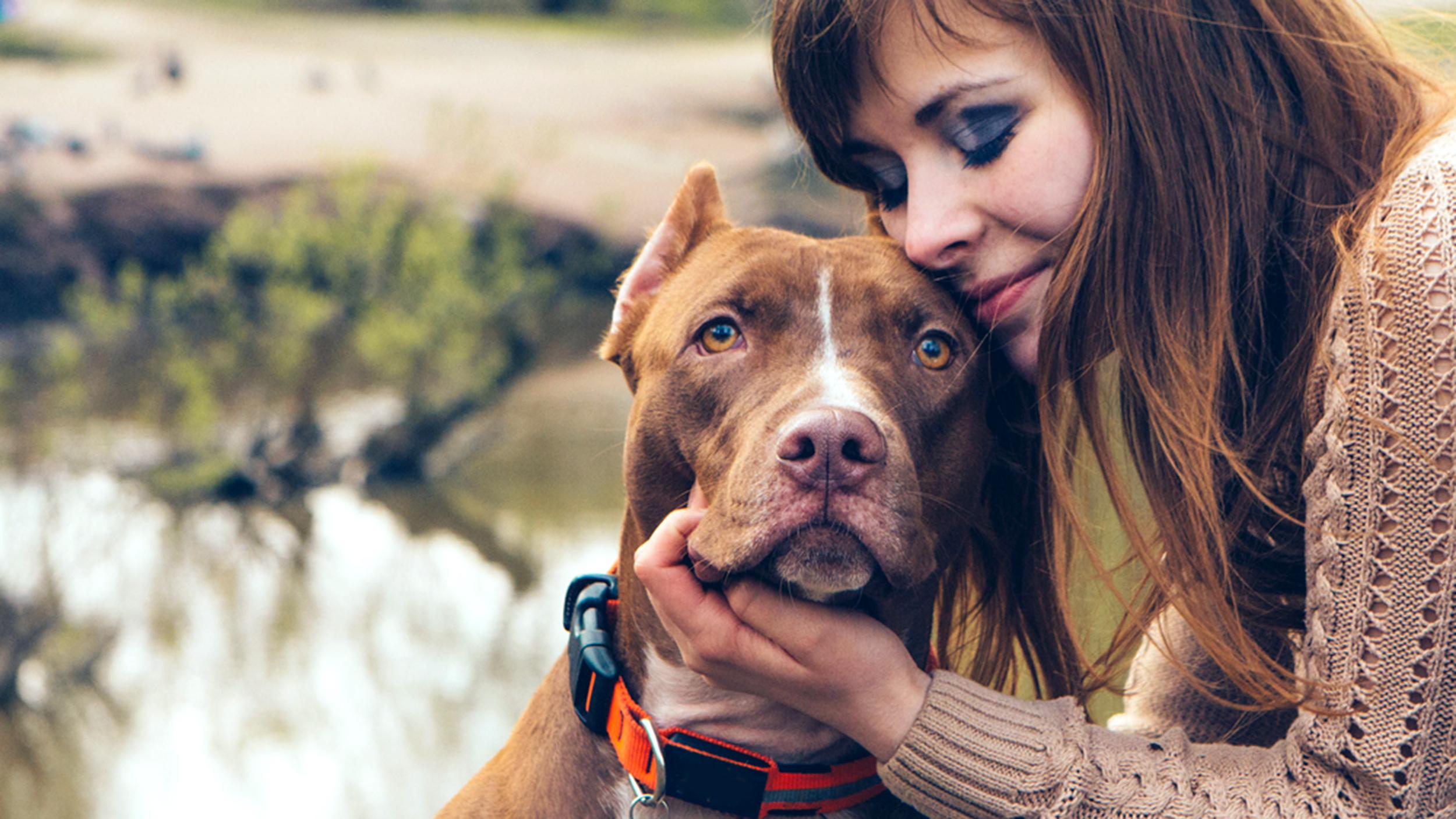 4 jel, hogy a kutyusod több törődést igényel