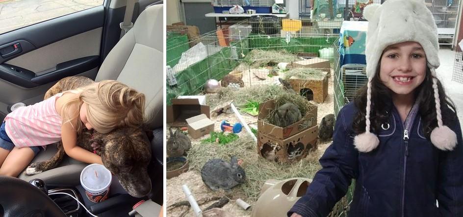 7 tündéri gyerkőc, aki úgy gondoskodik az állatokról, ahogy minden embernek kéne