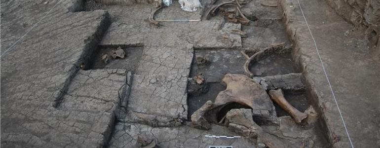 Őskőkori elefántmészárszék nyomait fedezték fel Görögországban