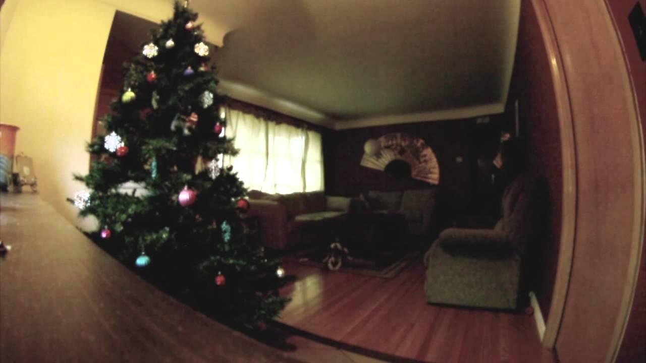 Nézd mit csinál a kutyus, mikor egyedül hagyják a karácsonyfával…
