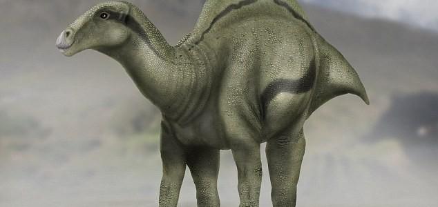 Púposhátú dinoszaurusz maradványaira bukkantak Spanyolországban