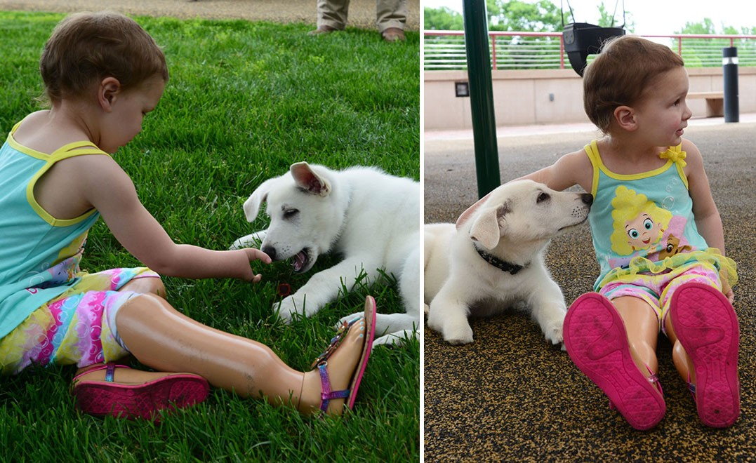 Mancs nélküli kutyus segíti az amputált lábú kislányt