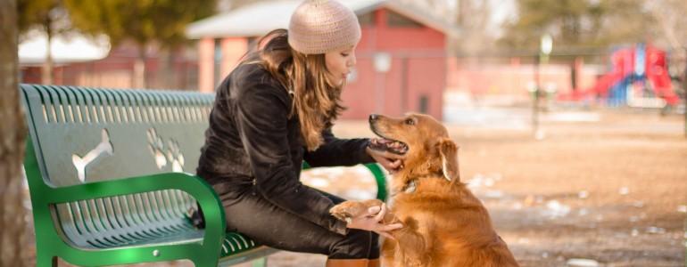 Illemszabályok a kutyafuttatóban – 1. rész
