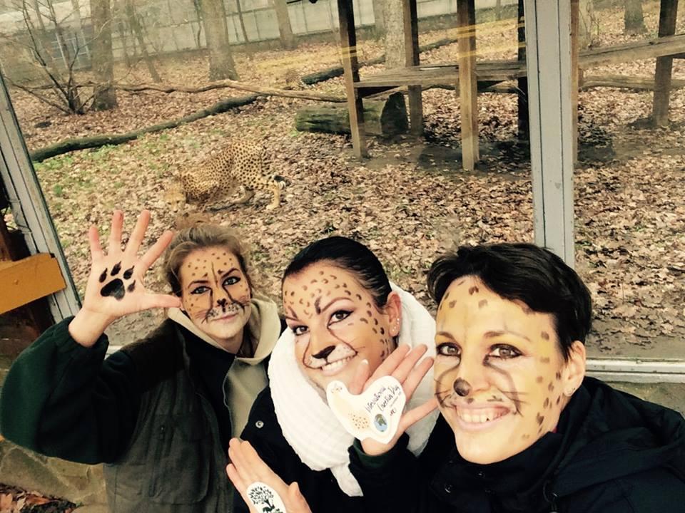 A gepárdok napját ünneplik a Nyíregyházi Állatparkban