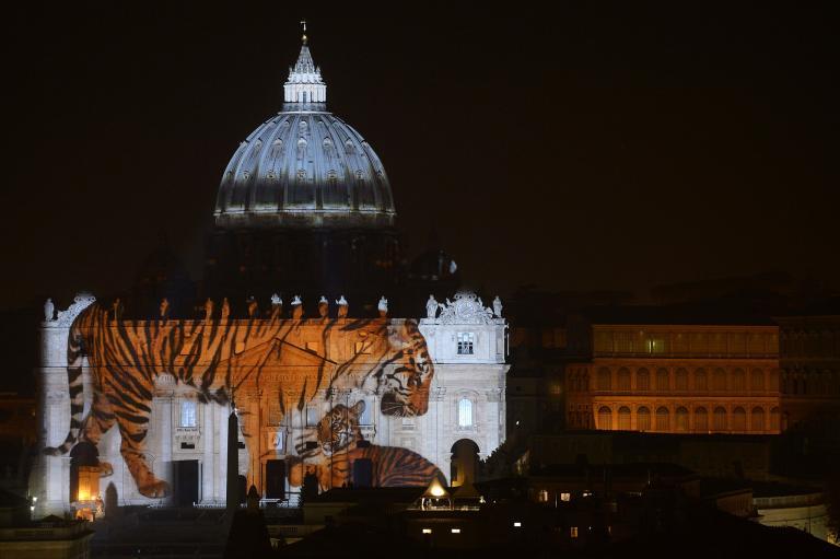 Veszélyeztetett állatok képét vetítették a Vatikánra