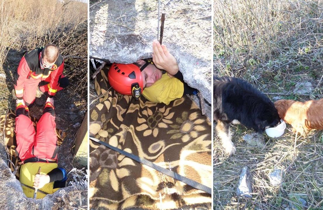 Dögkútba esett kutyákon segítettek a speciális mentők Makláron