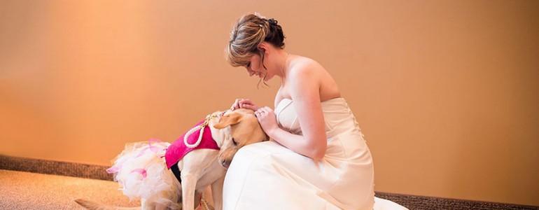 Esküvője napján is segítette szorongással küzdő gazdáját ez a tüneményes segítőkutya