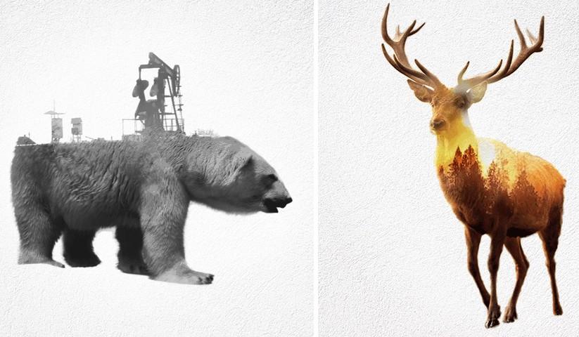 Félreérthetetlen üzenetet hordoznak az ember felelőtlenségéről ezek a művészi képek