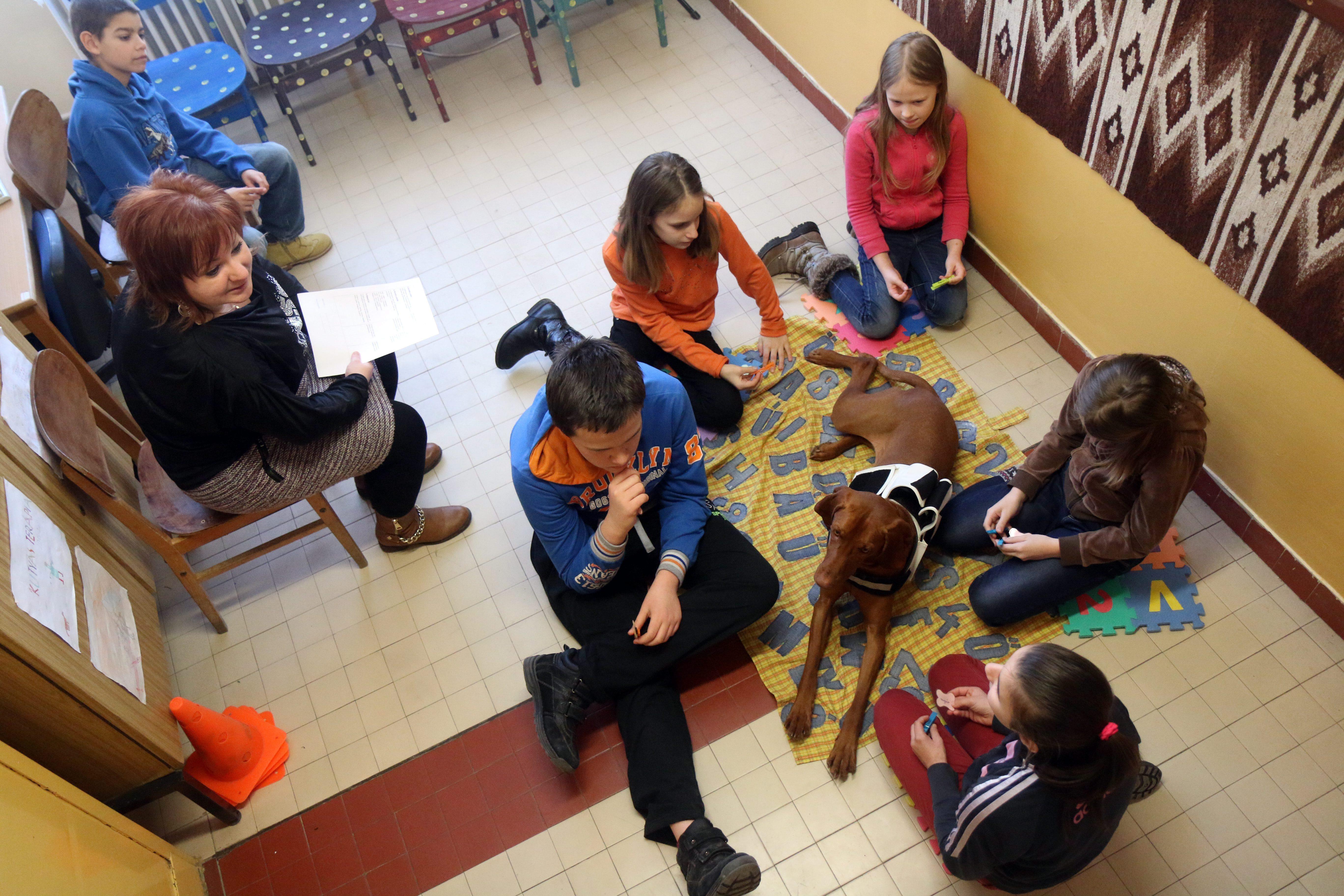 Terápiás kutyával tartanak pedagógiai foglalkozásokat egy ózdi iskolában