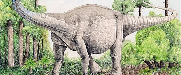 Tucatnyi elefántéval vetekedett a súlya az Argentínában feltárt titanoszaurusznak