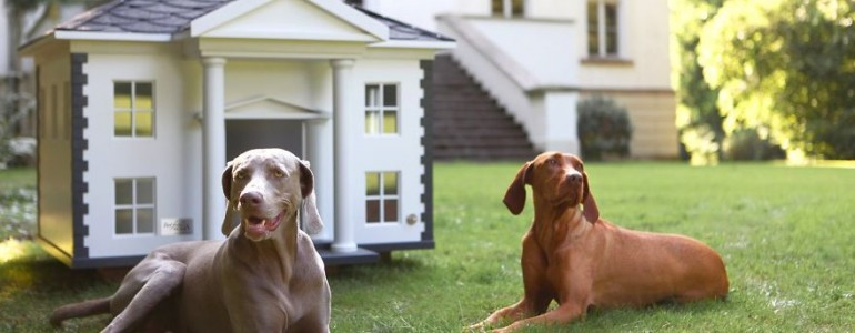 10 menő kutyaház, amiktől eláll a lélegzeted