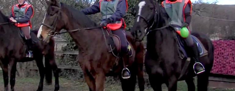 """""""Polgárőr ló semmitől sem fél"""" – Így képzik a polgárőröket és lovaikat"""