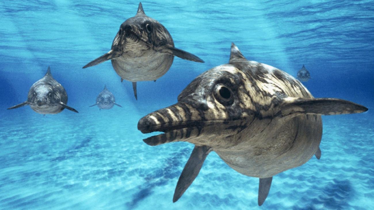 A globális felmelegedés okozta a halgyíkok kipusztulását