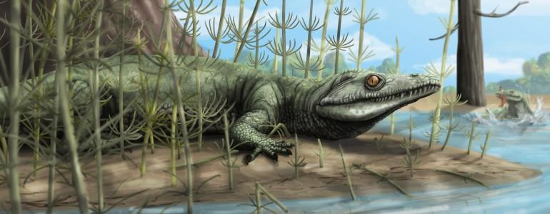 Kétszázötvenmillió éve élt, eddig ismeretlen hüllőfajt fedeztek fel Brazíliában