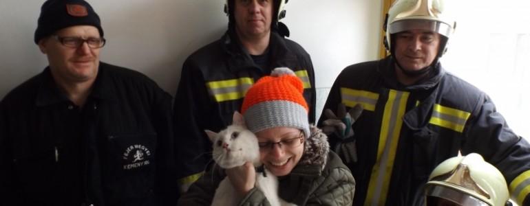 Speciális kamera segítségével mentették meg a süket macskát a dunaújvárosi tűzoltók