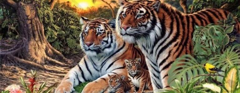 Hány tigris van ezen a képen?