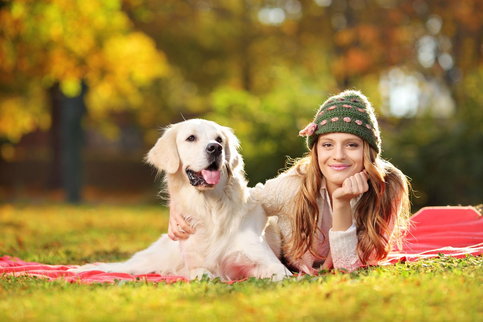 Kutyabarátok családi találkozója lesz az Olimpia Parkban