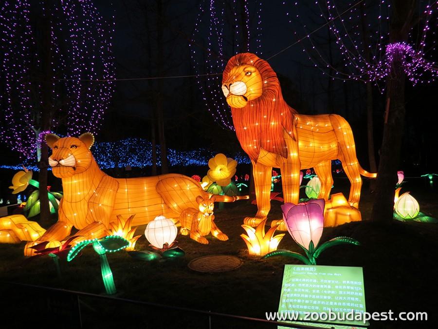 Kínai lampionfesztivál péntektől a Fővárosi Állatkertben