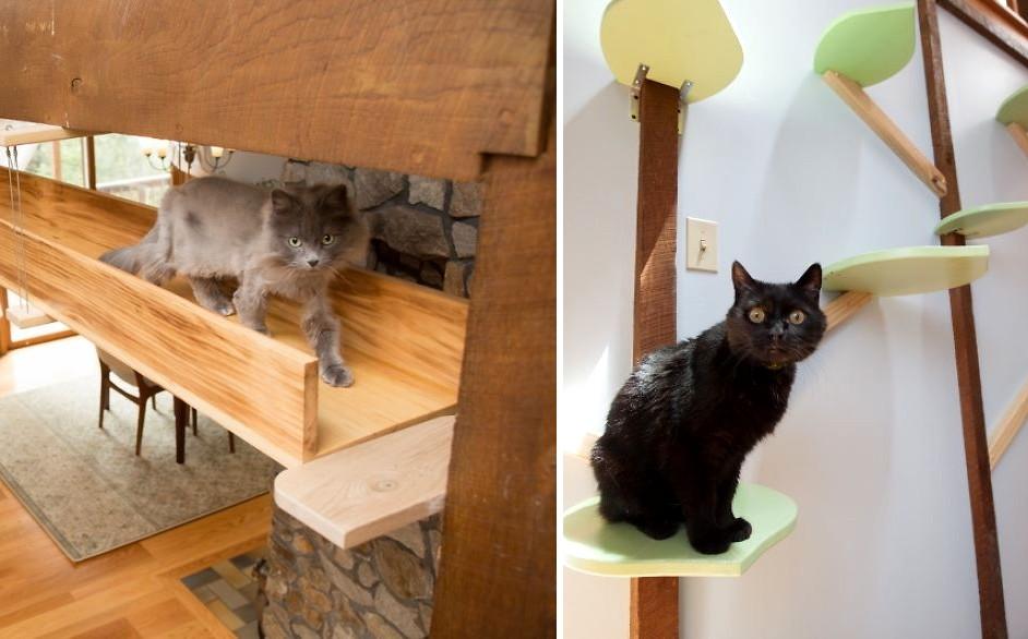 Így lett egyszerű nappaliból stílusos macskajátszótér