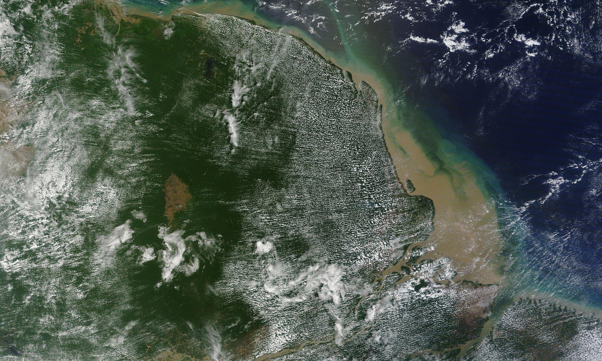 Óriás korallzátonyra bukkantak az Amazonas folyó torkolatánál