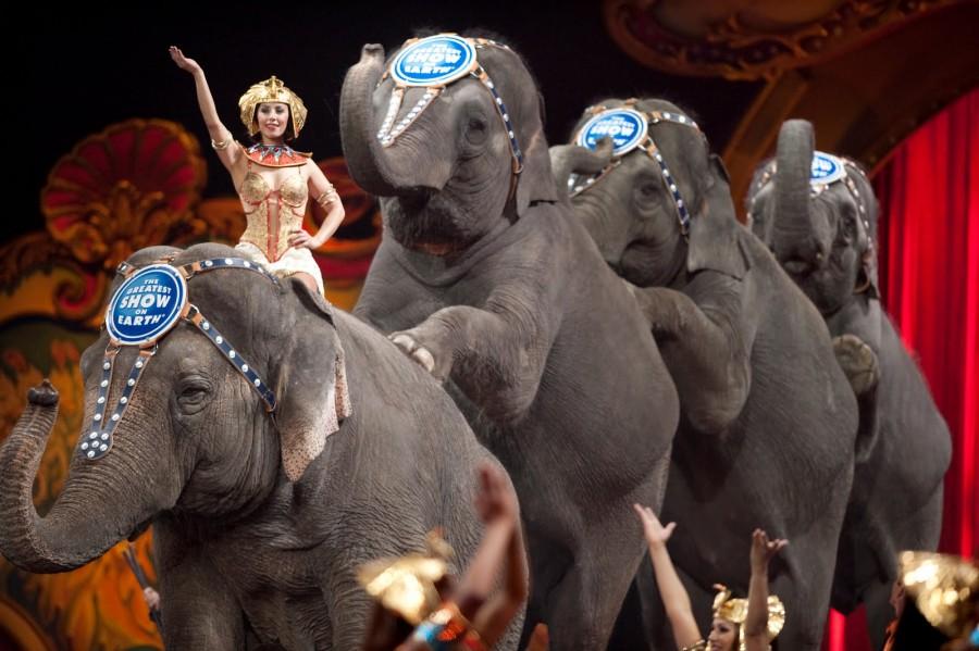 145 év után bezárja kapuit a világ legrégebbi elefánt show-ja