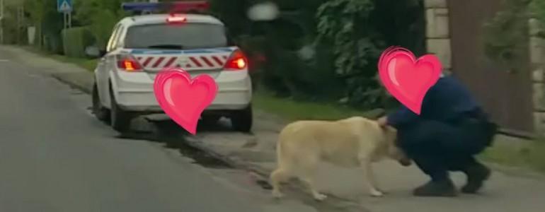 Állatbarát rendőrökről szóló megható történet kering a Facebookon