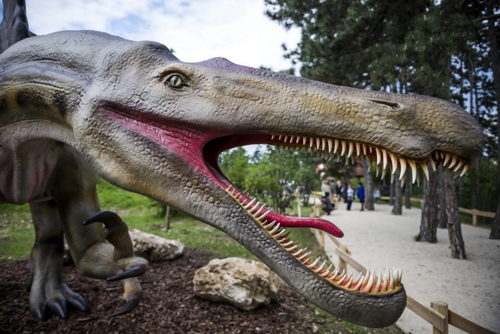 Veszprém, 2016. május 18. Egy Spinosaurus életnagyságú mása a veszprémi õslényparkban 2016. május 18-án, a megnyitó napján. A kéthektáros parkban 30 dinoszaurusz látható, köztük a 23 méter hosszú Diplodocust vagy a több mint 4 méter magas Tyrannosaurus Rexet, amelyekrõl a tudnivalókat a mellettük kihelyezett tájékoztató tábla tartalmazza. MTI Fotó: Bodnár Boglárka