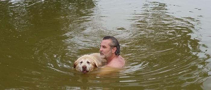Túl öreg már ez a kutyus az úszáshoz, de gazdája nem hagyja, hogy kiessen a kondiból