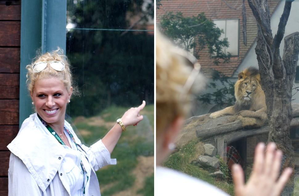 Oroszlán Szonja örökbefogadott egy oroszlánt