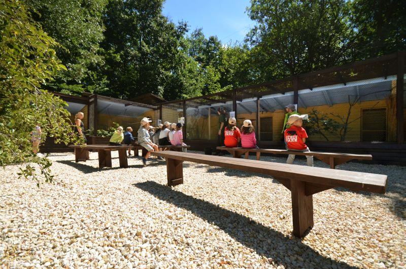 Új madárrészleg a Budakeszi Vadasparkban