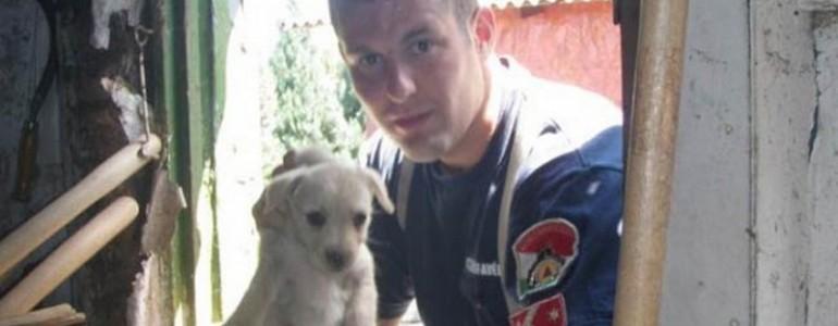 Kölyökkutyát mentett egy tatabányai tűzoltó