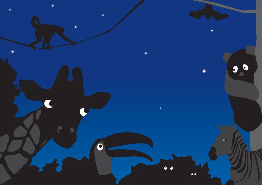Állatkertek Éjszakája augusztus 26-án