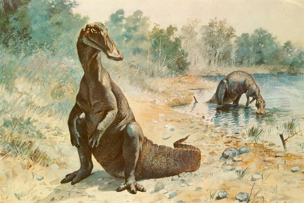 Nyolcvan millió évvel ezelőtt élt hadroszaurusz maradványait tárták fel Észak-Kínában