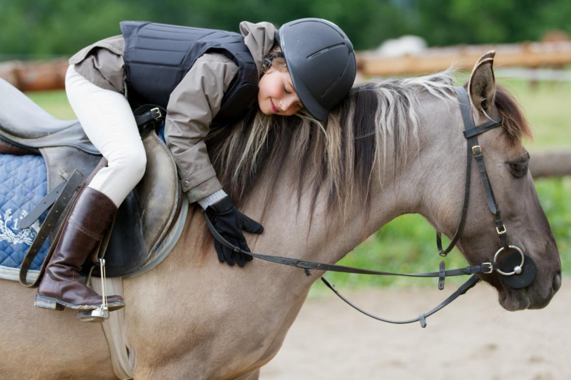 Díjlovas- és lovasterápiás versenyt rendeznek szeptemberben Fóton