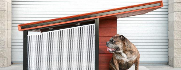 Egy kutyaház, amire még a gazdik is irigykedni fognak