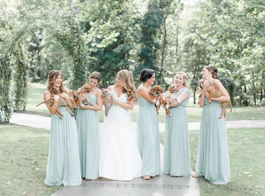 Virágcsokor helyett menhelyi kutyusokkal készültek ezek az esküvői fotók – Fontos dolgot üzen vele a menyasszony
