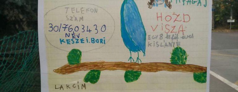 Egy 8 éves kislány keresi hullámos papagáját – Segíts, ha tudsz!