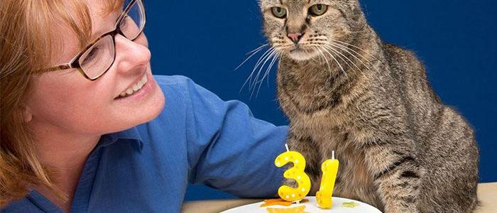 31. születésnapját ünnepli a világ egyik legidősebb cicája