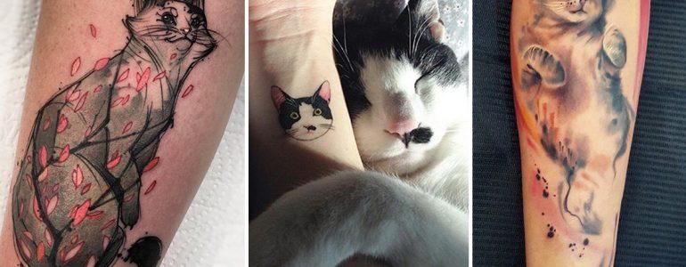 28 macskás tetoválás, amit minden cicaimádó szívesen viselne
