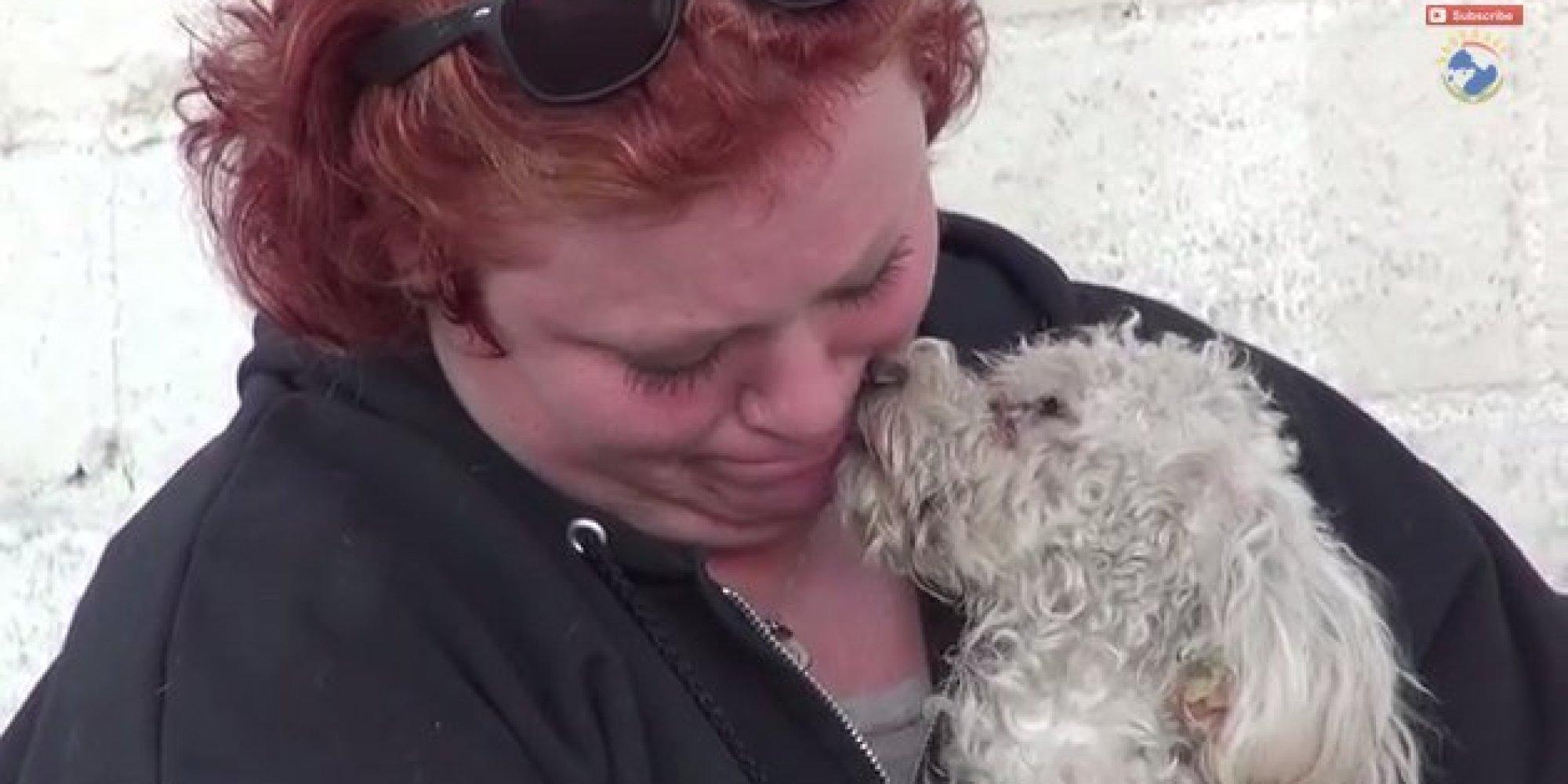 A tapasztalt állatmentő sem bírta könnyek nélkül ennek a kutyusnak a megmentését