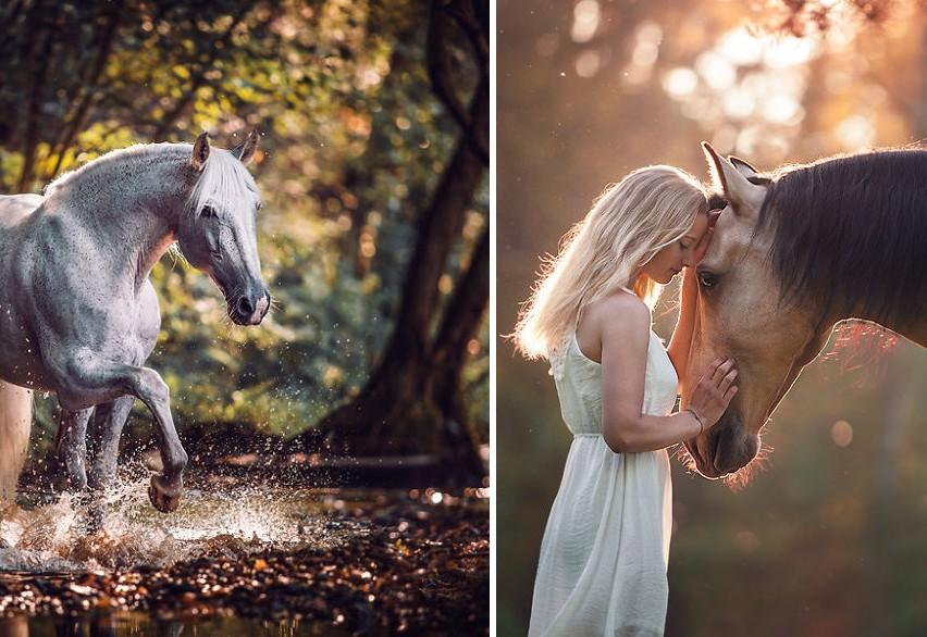 A lovak csodálatos világába kalauzol minket ez a fotós