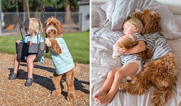 Imádnivaló kutyus segíti az örökbefogadott kisfiú beilleszkedését